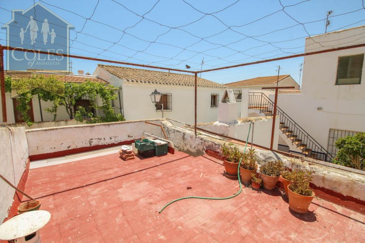 Coles of Andalucia property GAL2T01 photo 15