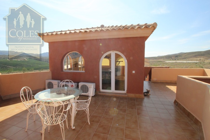 Coles of Andalucia property GAL7V02 photo 27