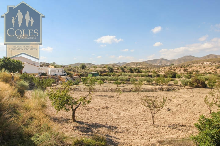 Coles of Andalucia property HUE4CG02 photo 13