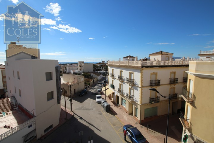 Coles of Andalucia property PAL4A02 photo 25
