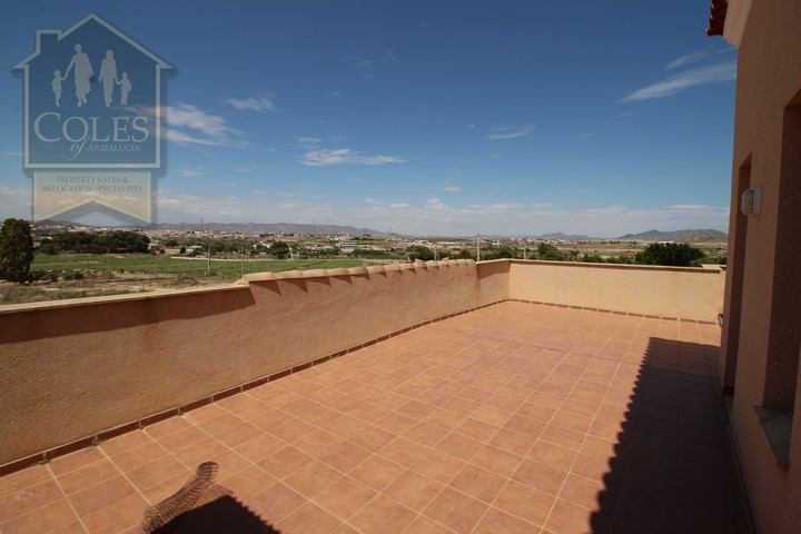 Coles of Andalucia property VER4VL02 photo 15